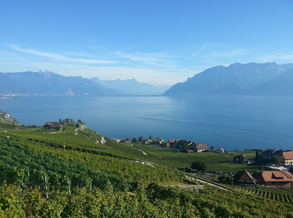 Vine_Terraces_of_Lavaux_and_the_Leman_lake_in_Switzerland.jpg